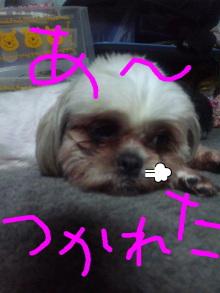 r127mikarinさんのブログ-Image001.jpg