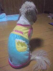 Doki☆Waku☆シーチャンズ♪♪-100630_205440.jpg