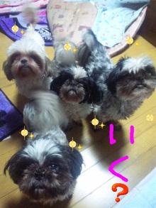Doki☆Waku☆シーチャンズ♪♪-100725_160017.jpg
