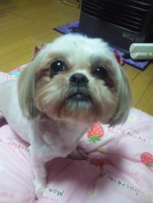 Doki☆Waku☆シーチャンズ♪♪-100730_003324.jpg