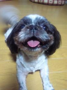 Doki☆Waku☆シーチャンズ♪♪-100810_195532.jpg