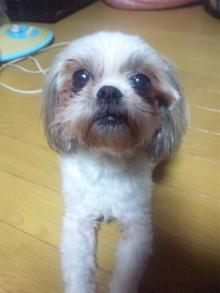 Doki☆Waku☆シーチャンズ♪♪-100826_205033.jpg