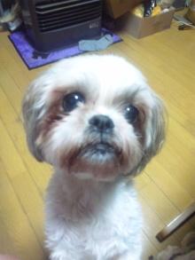 Doki☆Waku☆シーチャンズ♪♪-100902_213800.jpg