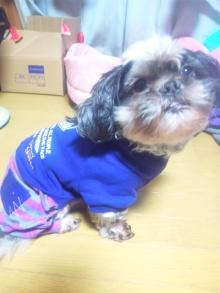Doki☆Waku☆シーチャンズ♪♪-101002_190837.jpg