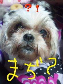 Doki☆Waku☆シーチャンズ♪♪-Image007.jpg