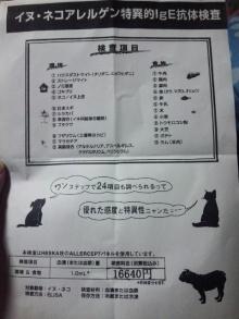 Doki☆Waku☆シーチャンズ♪♪-101111_000542.jpg