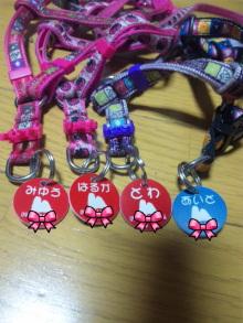 Doki☆Waku☆シーチャンズ♪♪-101119_012336.jpg