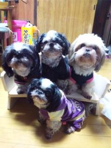 Doki☆Waku☆シーチャンズ♪♪-101121_201130.jpg