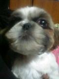 Doki☆Waku☆シーチャンズ♪♪-06-02-27_23-00.jpg