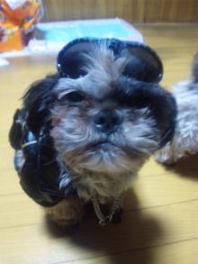 Doki☆Waku☆シーチャンズ♪♪-101201_192442.jpg
