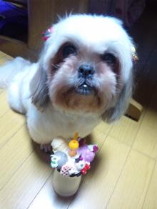Doki☆Waku☆シーチャンズ♪♪-101202_185642.jpg