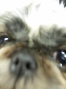 Doki☆Waku☆シーチャンズ♪♪-101215_213709.jpg