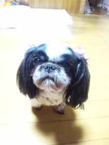 Doki☆Waku☆シーチャンズ♪♪-110221_203744.jpg