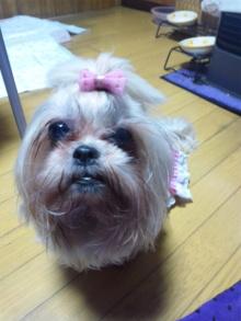 Doki☆Waku☆シーチャンズ♪♪-110517_014038.jpg
