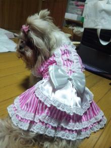 Doki☆Waku☆シーチャンズ♪♪-110517_013918.jpg