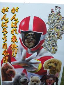 Doki☆Waku☆シーチャンズ♪♪-110522_121947.jpg