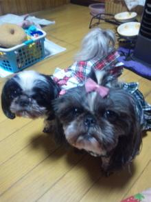 Doki☆Waku☆シーチャンズ♪♪-110602_014847.jpg
