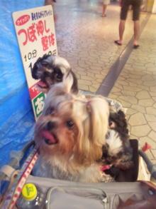 Doki☆Waku☆シーチャンズ♪♪-110807_181331.jpg