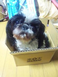 Doki☆Waku☆シーチャンズ♪♪-110928_192402.jpg