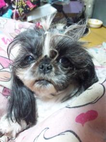 Doki☆Waku☆シーチャンズ♪♪-111029_010958.jpg