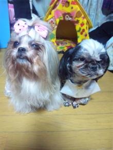 Doki☆Waku☆シーチャンズ♪♪-120217_212511.jpg