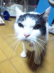 Doki☆Waku☆シーチャンズ♪♪-120301_220946.jpg