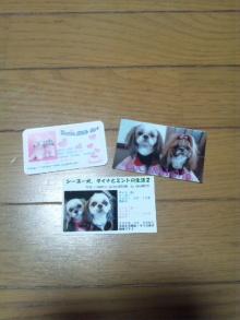 Doki☆Waku☆シーチャンズ♪♪-DSC_0035.JPG