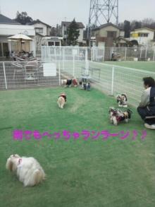Doki☆Waku☆シーチャンズ♪♪-PhotoHenshu_20120323023458.jpg