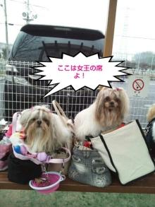 Doki☆Waku☆シーチャンズ♪♪-PhotoHenshu_20120323025328.jpg