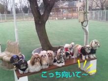 Doki☆Waku☆シーチャンズ♪♪-PhotoHenshu_20120323025745.jpg