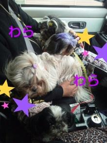 Doki☆Waku☆シーチャンズ♪♪-PhotoHenshu_20120417091439.jpg