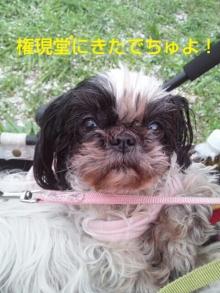 Doki☆Waku☆シーチャンズ♪♪-PhotoHenshu_20120417091121.jpg