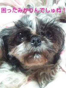 Doki☆Waku☆シーチャンズ♪♪-PhotoHenshu_20120501041210.jpg