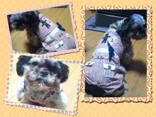Doki☆Waku☆シーチャンズ♪♪-PicsArt_1335889742531.jpg