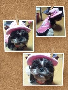 Doki☆Waku☆シーチャンズ♪♪-PicsArt_1335889865649.jpg