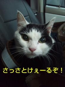 Doki☆Waku☆シーチャンズ♪♪-PhotoHenshu_20120529114641.jpg