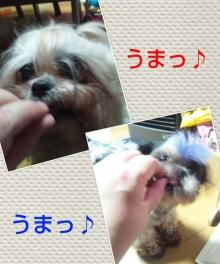 Doki☆Waku☆シーチャンズ♪♪-PhotoHenshu_20120529115236.jpg