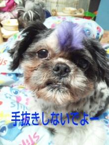 Doki☆Waku☆シーチャンズ♪♪-PhotoHenshu_20120531133123.jpg
