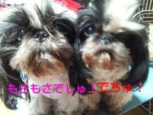 Doki☆Waku☆シーチャンズ♪♪-PhotoHenshu_20120601014613.jpg