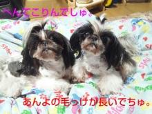 Doki☆Waku☆シーチャンズ♪♪-PhotoHenshu_20120601015325.jpg