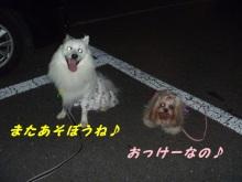 Doki☆Waku☆シーチャンズ♪♪