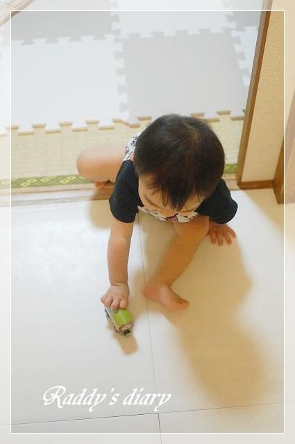 DSC_0031_20110815000334.jpg