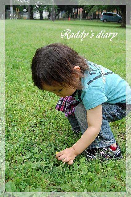 DSC_0057_20110608001903.jpg