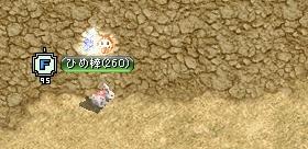 20111103Hi_001.jpg