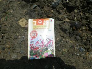 2012.06.17保津川 007