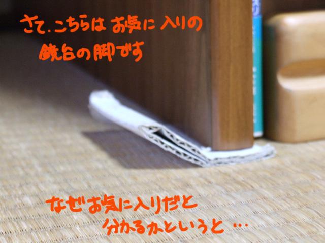 DSCF110411b1364.jpg