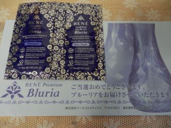 ブルーリア1