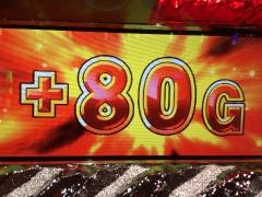 サバンナチャンス 80G