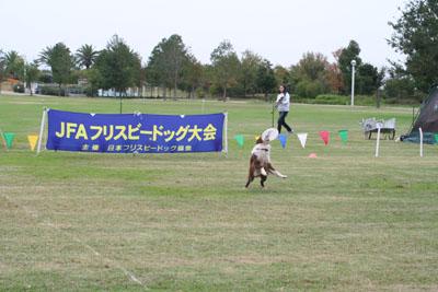201010314.jpg
