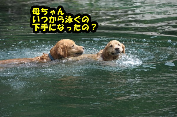 DSC_7287_20140922210337f8c.jpg